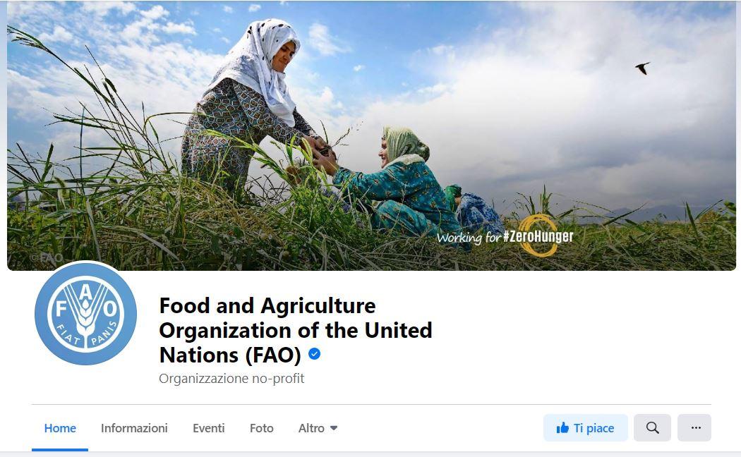 Spunta blu sulla pagina della FAO